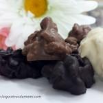 Rocas de chocolate